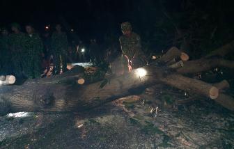 Clip: Trắng đêm dọn đường để đến hiện trường vụ sạt lở khiến 53 người chết, mất tích