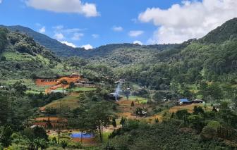 Dự án bất động sản đua nhau tấn công đất rừng ở Lâm Đồng