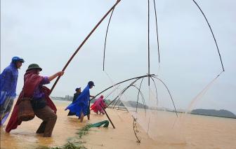 Nước sông Lam dâng cao, người dân đổ xô ra ruộng bắt cá