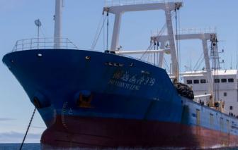 """Trung Quốc thiếu hải sản, Mỹ Latinh """"lo sốt vó"""""""