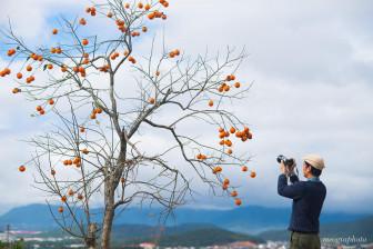 Những địa điểm săn mây được yêu thích nhất Việt Nam