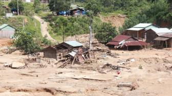 Đại biểu Quốc hội: 'Một số chủ nhà máy điện lạm dụng quy trình để phá rừng, lấy gỗ quý'