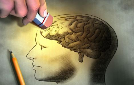 Clip: Ký ức hình thành và phai nhạt như thế nào?