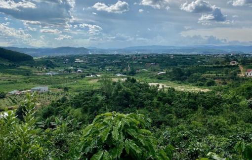 Phân lô, bán nền gắn mác khu nghỉ dưỡng tràn lan ở Lâm Đồng
