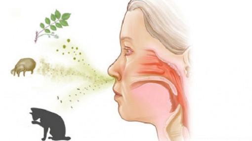 Xoa bóp bấm huyệt chữa viêm mũi dị ứng tại nhà