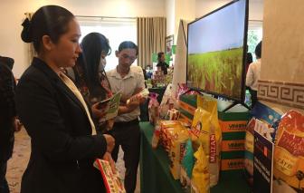 Việt Nam bị đánh giá yếu khi tham gia chuỗi giá trị toàn cầu
