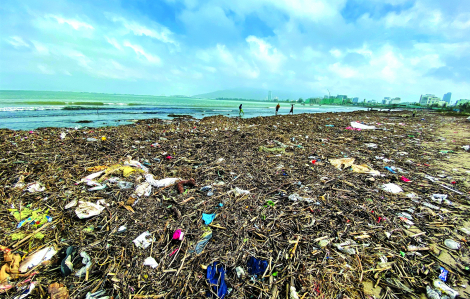 Ngăn chặn từ xa nguồn rác thải ra biển