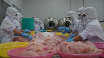 Trung Quốc tăng mức độ kiểm tra COVID-19 từ cá tra nhập của Việt Nam