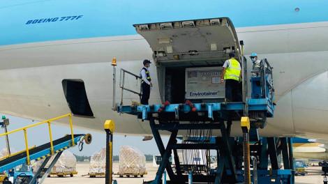 117.600 liều vắc-xin COVID-19 đầu tiên đã về đến sân bay Tân Sơn Nhất