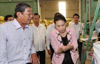 """Chủ tịch Quốc hội thăm cơ sở sản xuất """"gạo ngon nhất thế giới"""""""