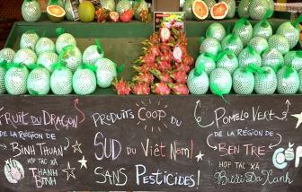 Thời điểm để kinh tế Việt Nam vượt lên