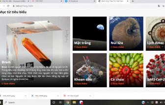 Bách khoa toàn thư Việt Nam: Thử thách với người biên soạn lẫn người dùng