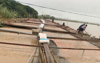 Hơn 800 tấn cá của người dân Đắk Lắk bị thiệt hại do mưa lũ