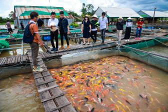 Tết Nguyên đán 2021: Du khách vẫn ưu tiên tour trọn gói