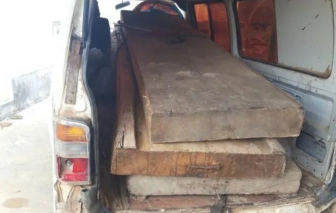 Khởi tố, bắt tạm giam chủ tịch xã bắt gỗ lậu của dân về bán cho cán bộ