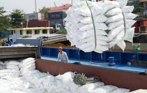 Giá gạo xuất khẩu có mức bình quân cao nhất trong gần 10 năm