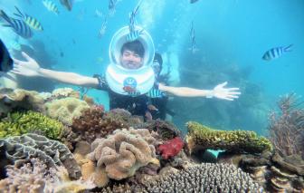 Gần một triệu đồng cho 20 phút đi bộ dưới đáy biển Phú Quốc