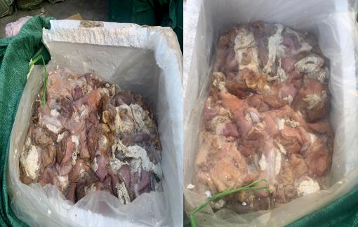 Bắt xe tải chở 3,5 tấn thịt, nội tạng  heo bốc mùi hôi thối vào TPHCM tiêu thụ