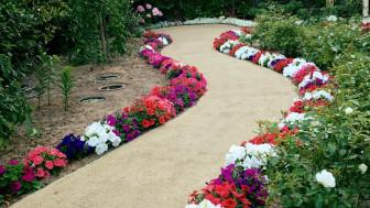 Cách trang trí sân vườn ấn tượng mà tiết kiệm cho gia chủ đón năm mới