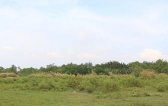 Sunny Island bị khởi kiện ra trọng tài quốc tế liên quan dự án Phước Kiển