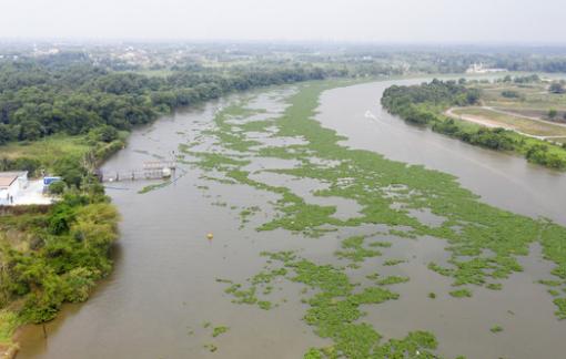 TPHCM dự kiến dời điểm lấy nước thô trên sông Sài Gòn để hạn chế ô nhiễm