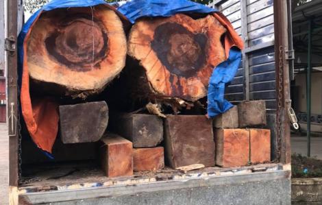 Bị phát hiện vận chuyển lâm sản trái phép, đối tượng quăng gỗ xuống lề đường rồi bỏ trốn