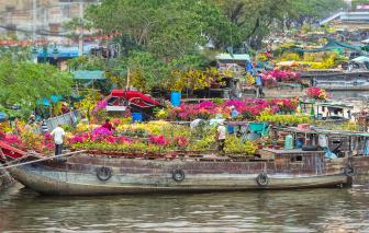 Tết về đến bến Bình Đông ngắm hoa, nghe đờn ca tài tử