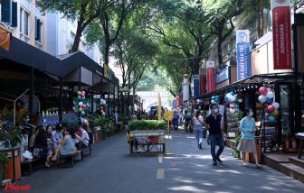 Người dân di chuyển thế nào để tham quan đường hoa, đường sách tết Tân Sửu 2021?