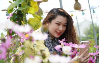 Thong dong trong làng hoa Sa Đéc, vườn quýt Lai Vung
