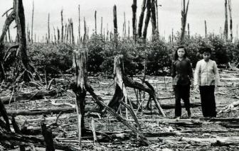Tòa án Pháp xét xử vụ kiện chất độc da cam tại Việt Nam