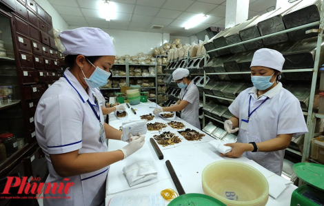 TPHCM bị chê kiểm tra cơ sở y học cổ truyền quá ít