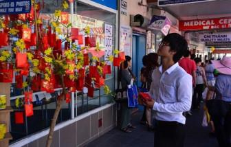 """Tết Nguyên đán của người Việt ở Úc đã được """"trả lại tên"""""""