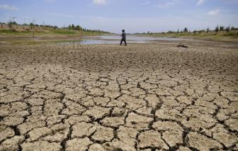 Các tỉnh Đồng bằng sông Cửu Long bắt đầu bị xâm nhập mặn