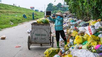 Rà soát tình hình nhập khẩu rác thải