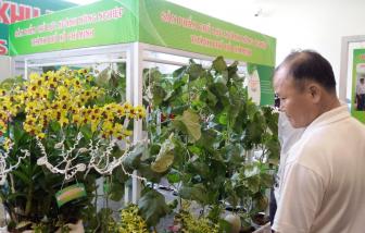 Lý giải nền nông nghiệp tỷ USD của TPHCM