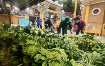 """Người Sài Gòn mang xe container ra Hải Dương mua 20 tấn nông sản về bán """"giá 0 đồng"""""""