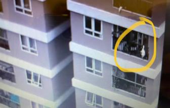 Thót tim với clip em bé rơi từ tầng 12 chung cư, may mắn có người đỡ kịp