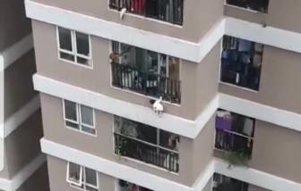 Cháu bé ngã từ tầng 12 chung cư đã tỉnh táo, qua cơn hoảng loạn