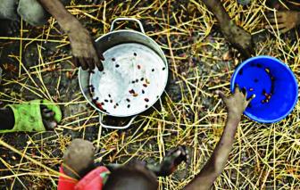 Đại dịch COVID-19 làm tê liệt các quốc gia nghèo nhất thế giới