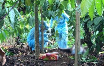Đắk Lắk: Nửa thi thể nam giới được phát hiện trong rẫy cà phê