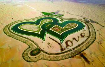 Tìm tình yêu giữa lòng sa mạc