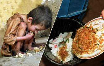 Con người vứt đi gần một tỷ tấn thực phẩm thừa mứa mỗi năm
