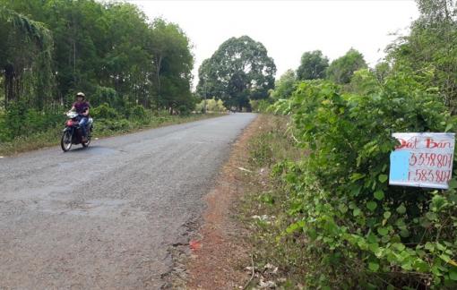 Bong bóng bất động sản Bình Phước đã vỡ, nhà đầu tư ôm đất bạc tỷ mắc cạn