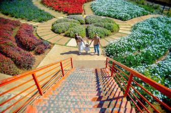 4 điểm du lịch của Đà Lạt nên ghé ngày cuối tuần