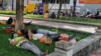 Giấc ngủ vội giữa lòng thành phố