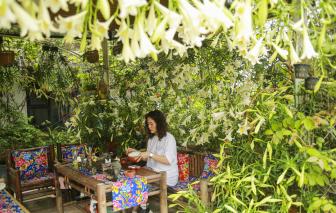 """""""Khu rừng"""" đầy hoa trên sân thượng của người phụ nữ yêu thiên nhiên"""