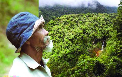 Dành 1/4 thế kỷ trồng rừng để cứu dân làng thoát nạn đói