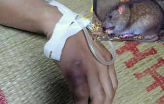 Bệnh nhân nổi hạch toàn thân do chuột cắn