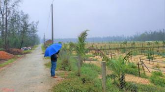 Quảng Ngãi cho Công ty Phát Đạt nghiên cứu dự án, nguy cơ xóa sổ hàng trăm hecta rừng