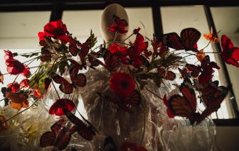 Hoa thơm cỏ lạ và những thông điệp ý nghĩa về cuộc sống